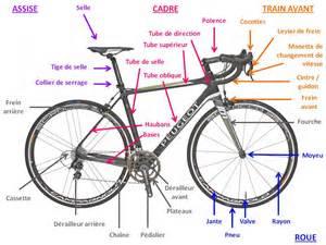 velo le anatomie du v 233 lo de route and go