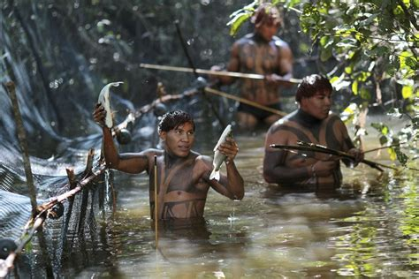 Amazon Tribe | yawalapiti tribe living traditionally in the amazonian
