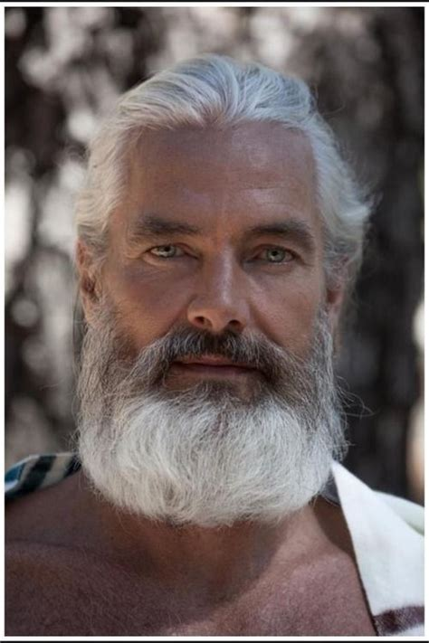 beards for men over 60 25 best ideas about grey beards on pinterest bearded