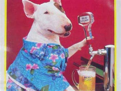 what of was spuds mackenzie who is bud light spuds mackenzie business insider