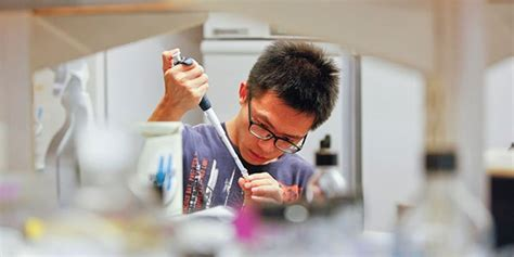 Brandeis Mba Requirements by Program Of Study Biotechnology At Brandeis