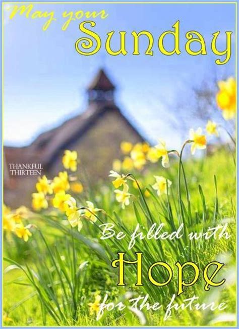 sunday  filled  hope pictures