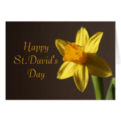St Davids 2 Gift Card - st davids day gifts t shirts art posters other gift ideas zazzle
