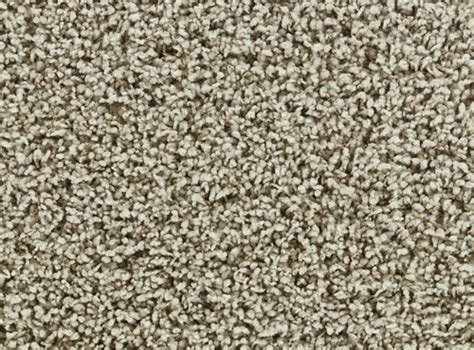 Discounted Flooring Hurricane Area - 33 best images about beaulieu bliss carpet on