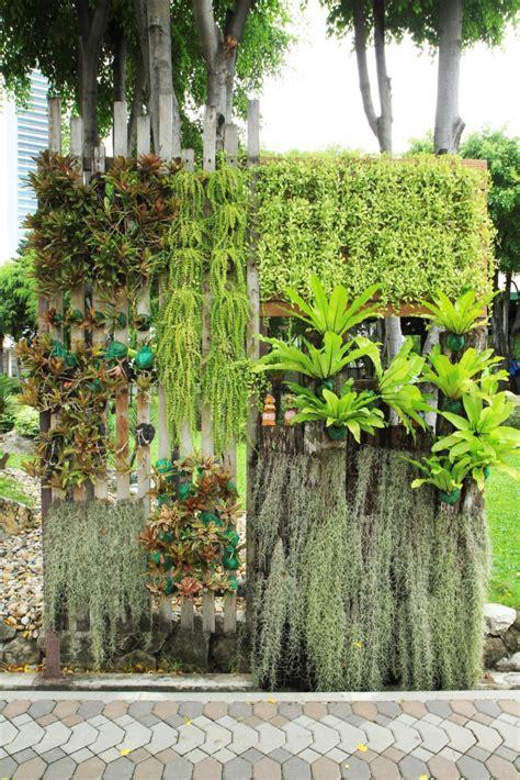 vertikaler garten ideen h 228 ngende g 228 rten pflanzen vertikal anbauen