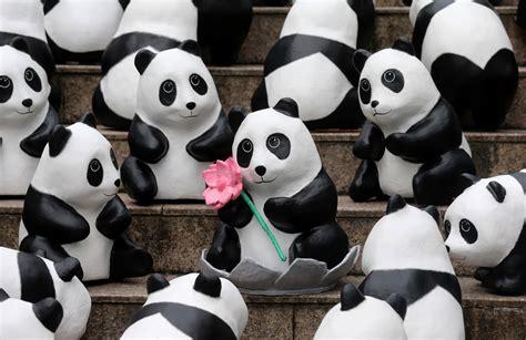How To Make A Paper Mache Panda - it s panda monium 1 600 bears win the hearts of