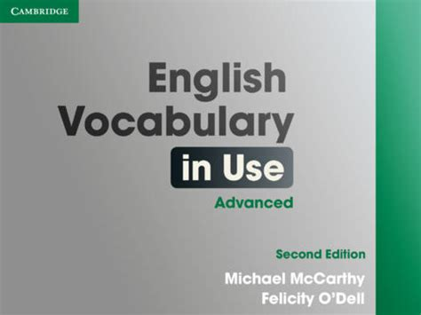 advanced english in use english vocabulary in use mi opini 243 n y experiencia