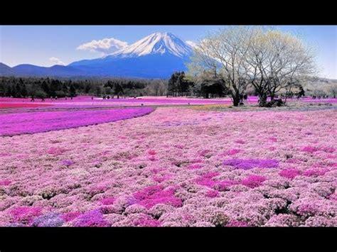 los paisajes mas hermosos del mundo los lugares mas