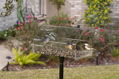 the 7 best duncraft pole mounted bird feeders slideshow