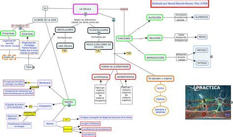 mapa conceptual manoli la celula