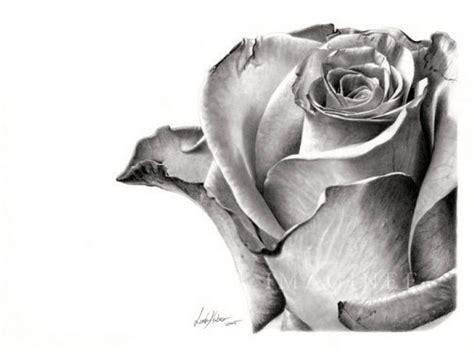 dibujos realistas a lapiz de flores dibujos de rosas negras a lapiz imagui