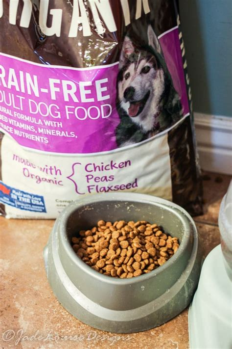 organix puppy food why we our organic food from organix giveaway organicpet