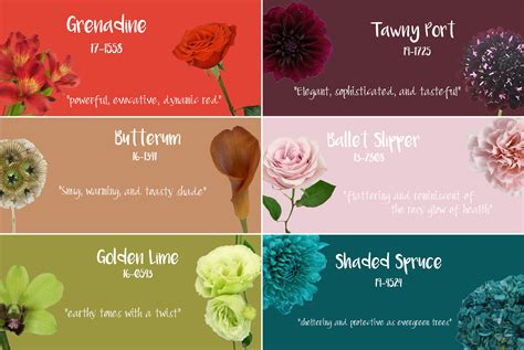 fall 2017 pantone colors pantone s top colors for fall 2017 fiftyflowers the blog