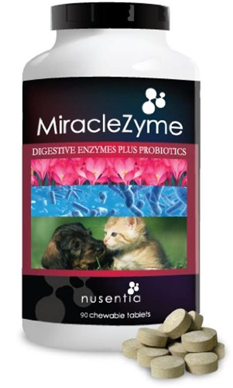 puppy stool remedy diet the 5 best probiotics for dogs with diarrhea and allergies reviewed pethelpful