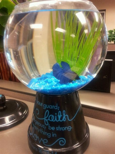 Best Fish For Office Desk 40 Best Images About Office On Reception Desks Aqua Culture And Vase