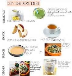 Detox Drink For Autism by Overview Of The Grey Sheet Diet Plan The Grey What Is