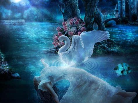 swan lake night blue moon flower lady desktop wallpaper hd