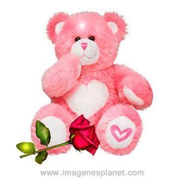 imagenes de osos de peluche de amor para dibujar buenos d 205 as im 193 genes bonitas de peluches im 225 genes de