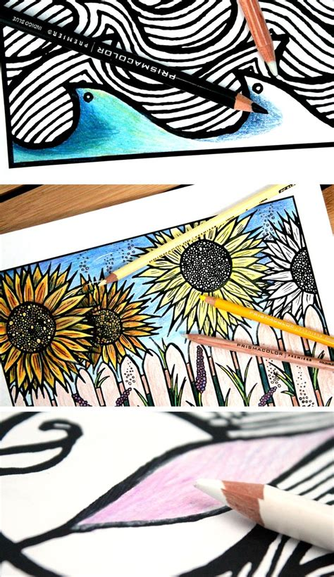 coloring books for adults indigo 1000 images about and crafts for adults on