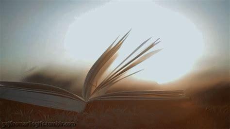 libro lyrebird beautiful moving and sunlight gif