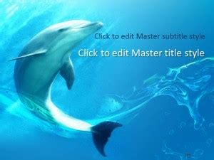 Free Dolphin Ppt Template Marine Biology Powerpoint