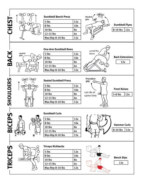 weight bench workout program upper body workout routine for women at the gym