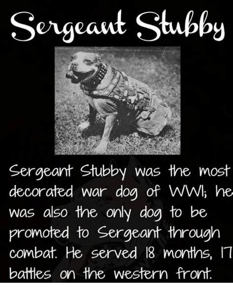 Sgt Stubby Bio 25 Best Memes About War Dogs War Dogs Memes