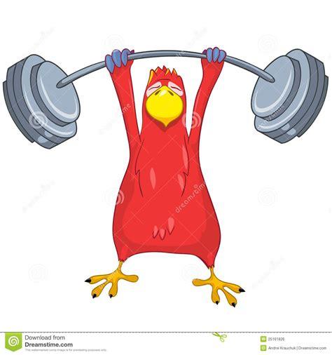 clipart ginnastica pappagallo divertente ginnastica illustrazione vettoriale