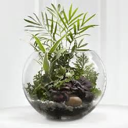 Round Glass Bowl Vase Jumbo Bubble Bowl Glass Vases 1pc 16 Quot Body Diameter Fish