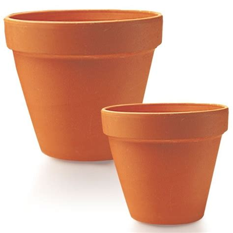 Clay Pots For Plants Flowerpot Types South Concepts