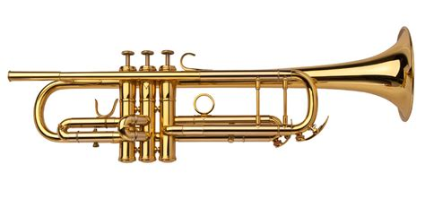 the trumpet of the brass instrument trumpet www imgkid com the image kid has it