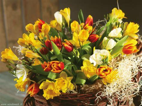 mazzi fiori recisi immagini fiori composizioni
