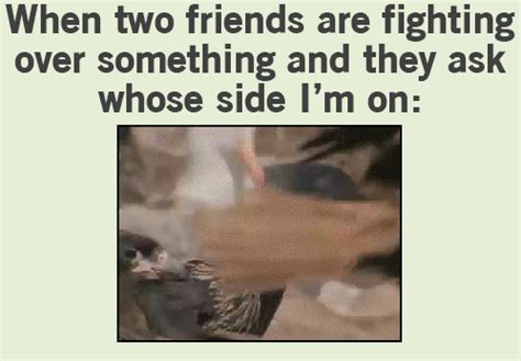 Funny Fighting Memes - funny memes about fighting pictures to pin on pinterest