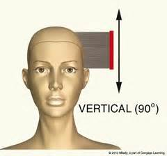 what is vertical layering haircut cutting hair layers horizontal or vertical search