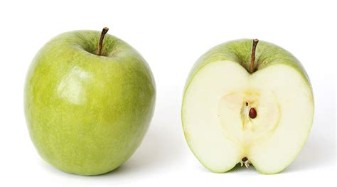 cross section of an apple file granny smith and cross section jpg wikimedia commons