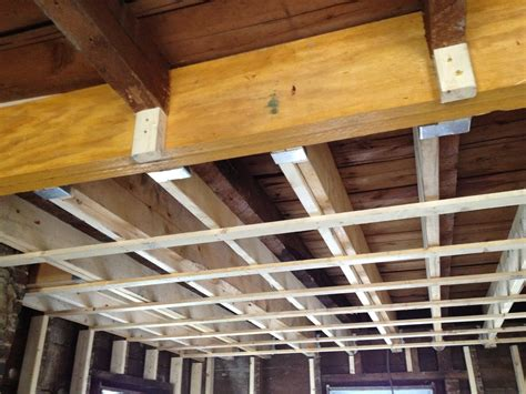 Sistering Floor Joists by What The Fisk August 2012