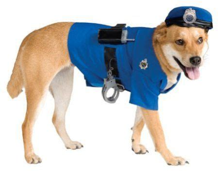 costumes for large dogs 20 cool costumes for large dogs