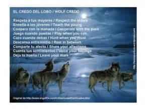 imagenes animal espiritual el lobo que me acompa 241 a sonopuntura