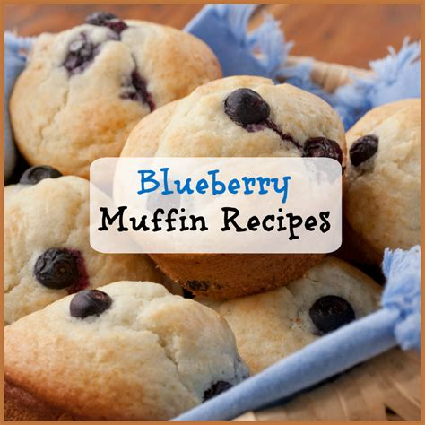 muffin recipes easy appetizers sandwiches mini pizzas burgers breakfast and more books our best blueberry muffin recipes plus bonus blueberry