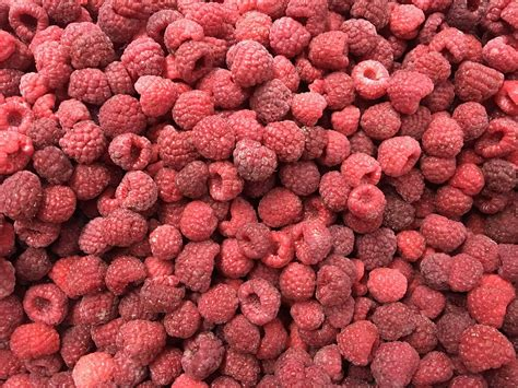 Iqf Frozen Raspberry 1kg iqf raspberries frozen raspberries cultivated sffb raspberrie sinofrost greensnow or