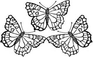 butterfly coloring pages bestofcoloring com