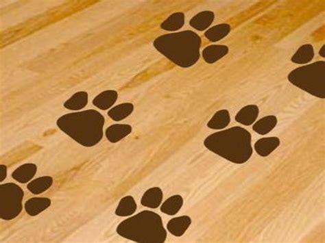 dog print wallpaper dog paws print wallpaper floor jbaws dog palace
