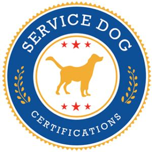 legitimate service certification how to a service service certifications
