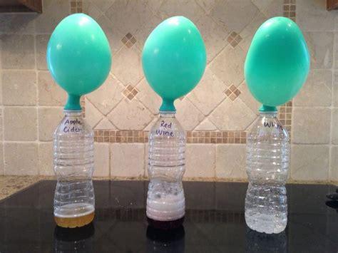 proyecto de ciencias para tercer grado las 25 mejores ideas sobre experimentos de ciencias