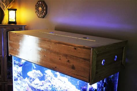 What Is Meant By Canopy by Building A Aquarium Canopy Reef Aquarium