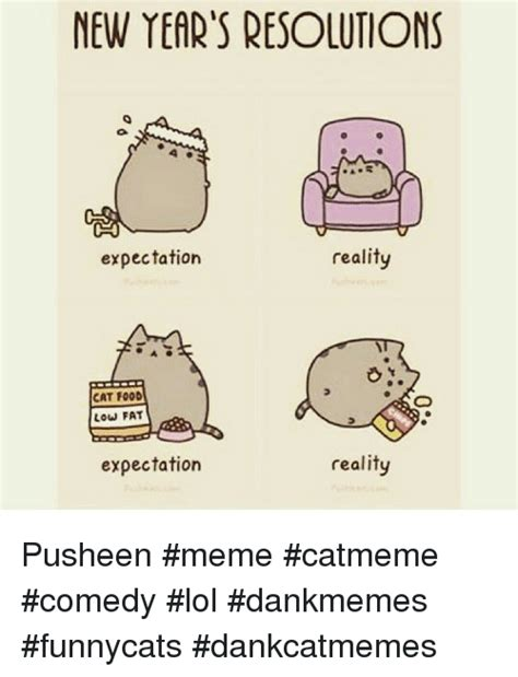 Pusheen Memes - pusheen memes related keywords pusheen memes long tail