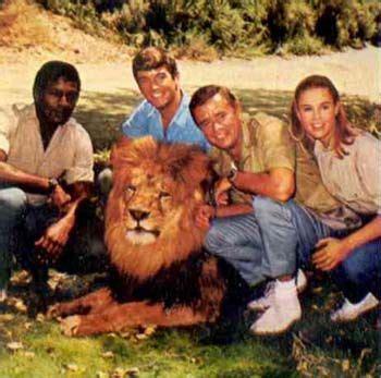 film lion on tv 52 best images about daktari on pinterest seasons tv