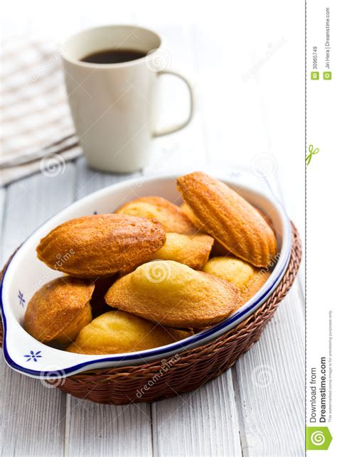 sweet madeleine cookies royalty free stock images image