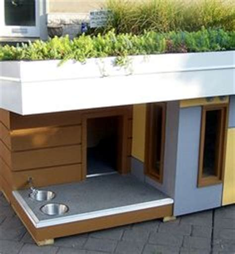 most amazing dog houses houses and home decor on pinterest amazing dog houses dog houses and beach houses