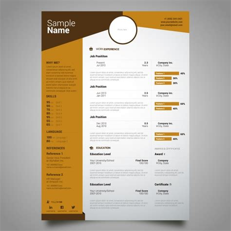 curriculum template design vector free download